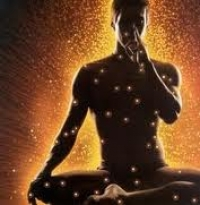 La Neurociencia y Yoga